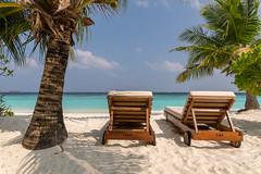 A9900656_s (AndiP66) Tags: tamron1530mm strand beach sonne sun adaaran select meedhupparu raa atoll insel island malediven maldives indischerozean indianocean februar february 2018 sony alpha sonyalpha 99markii 99ii 99m2 a99ii ilca99m2 slta99ii tamron tamronsp1530mmf28diusd 1530mm f28 amount andreaspeters