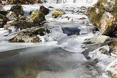 (lyli12) Tags: ice glace froid hiver cold aveyron aubrac nature ruisseau midipyrénées eau water poselongue nikon d7000 france