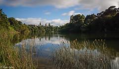 Waikato River Te Awa trail (rogsykes) Tags: sonya77ii ndfilter river waikato hamilton