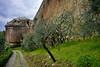 SIENA BASTIONE PERUZZI A PORTA PISPINI 976m (opaxir) Tags: siena walls mura bastione peruzzi flickrtravelaward