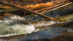 broken in fizzy water (Alta Alteo) Tags: baum geborsten sturm tobel schlucht eistobel isny oberstaufen al allgäu