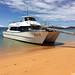 Boat Tours from Kaiteriteri to Abdel Tasman National Park