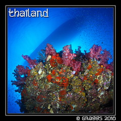 _MG_2184 (Graggs) Tags: 5dmkii blue bluewater canon5dmkii diving scuba similanislands thailand uwp underwater underwaterphotography sunburst boatshadow