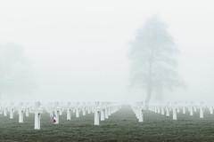 Normandy American Cemetery and Memorial (The Black Fury) Tags: cemetery omahabeach normandie normandy collevillesurmer fog flag tree highkey worldwarii