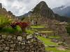 20180304_Peru_Machu_Picchu_389.jpg (Mike Ramsay) Tags: peru machupicchu travel holiday