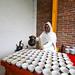 Ethiopian traditional coffee at zebu club