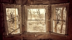 the changing worldview...(HWW) (BillsExplorations) Tags: window windowwednesday abandoned abandonedhouse abandonedillinois decay ruraldecay neglect forgotten broken worldview house country mansion old change
