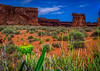 Sheep Meadow (tuhindas1989) Tags: sheepmeadow archesnationalpark landscape utah archesnp nikon travel travelphotography