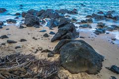 Hawaii USA - Kauai Island. Hanalei Beach. Lava Rock on the beach. (Feridun F. Alkaya) Tags: hawaii kauaiisland wailuafalls kauaisspirit forest waimeacanyonstatepark waimea waimeacanyon hawaiiisland ngc landscape canyon road kauaı grass soil aloha hanaleibeach hanalei usa worldheritagelist unescoheritagelist unesco unc kohala mauna hualalai kilauea volcanos garden sky flower honolulu waikikibeach beach