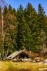 Горска приказка (saromon1989) Tags: forest tree hut people green yellow vitosha bulgaria mountain landscape nikon витоша българия болгария природа nature гора дървета зелено спокойствие