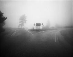Untitled-147-2-JPEG (Kiriakos Korakis (korax67)) Tags: 2017 πάρνηθα mamiya7 43mm kodaktmax4002 tmaxdev 20c 14 αρησ