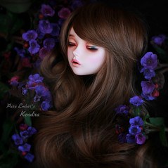 The wait (pure_embers) Tags: pure embers laura england resin bjd sd doll dolls fairyland uk girl fairyline60 ria pureembers emberskendra kendra photography photo ball joint brown hair blue flowers dark sleeping head