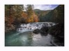 Dougan Falls (Krasne oci) Tags: water river washougalriver washingtonstate northwest nature landscape trees rocks evabartos artphotography texturedphoto photographicart douganfalls