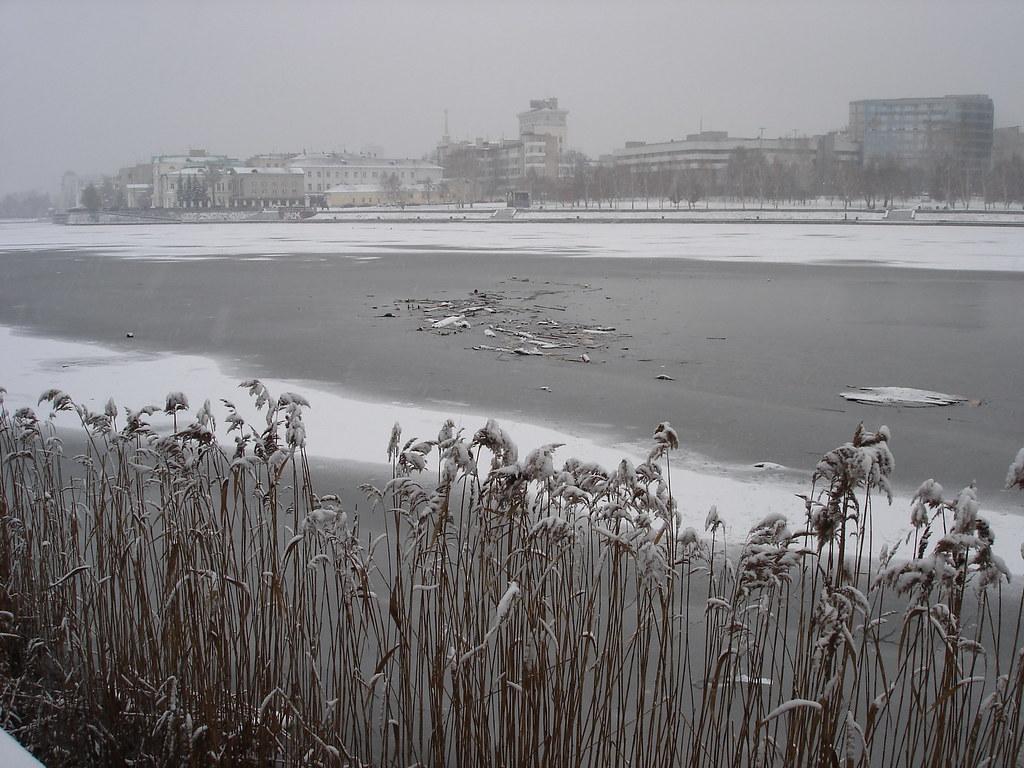 фото: Мусор во льду на Городском пруду