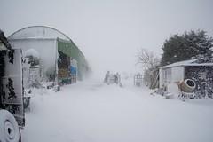 DSC_8000 (seustace2003) Tags: baile átha cliath ireland irlanda ierland irlande dublino dublin éire glencullen gleann cuilinn st patricks day zima winter sneachta sneg snijeg neve neige inverno hiver geimhreadh