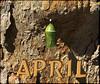 April's Promise (bethrosengard) Tags: bethrosengard photomanipulation digitallyenhanced photoart digitalmagic digitalart