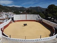 Mijas Plaza de Toros (DaveKav) Tags: bullring bull bullfighting spain mijas plazadetoros andalusia