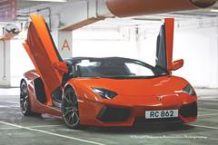 "Lamborghini, Aventador LP700-4 ""Roadster"", Tsim Sha Tsui, Hong Kong (Daryl Chapman Photography) Tags: rc862 lamborghini aventador lp7004 italian roadster hongkong china sar tsimshatsui power auto autos automobile automobiles car cars carspotting carphotography"