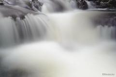 Eau (guysamsonphoto) Tags: guysamson nikond600 nikon50mmf18 water eau longexposure longueexposition