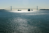 Verrazano-Narrows Bridge (RunningRalph) Tags: bridge newyork ship statenislandferry verrazano verrazanonarrows verrazanonarrowsbridge jerseycity newjersey verenigdestaten us