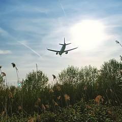 Fly me . . . . . #like4like #aviation #photography #likeforlike #plane #photo #likeforfollow #avgeek #photographer #likes #planespotting #photooftheday #likesforlikes #planes #photoshoot #followme #instagramaviation #photos #like4follow #aviationphotograp (vistainfinity) Tags: fly me like4like aviation photography likeforlike plane photo likeforfollow avgeek photographer likes planespotting photooftheday likesforlikes planes photoshoot followme instagramaviation photos like4follow aviationphotography art love aviationgeek instagood follow4follow aviationlovers planet photograph followforfollow aircraft