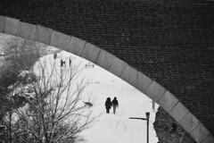 Sotto il ponte - Under the bridge. (sinetempore) Tags: sottoilponte underthebridge neve snow freddo cold inverno winter passeggiata walk amore love innamorati lovers street pavia biancoenero blackandwhite