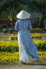 Vietnamese woman with traditional dress (phuong.sg@gmail.com) Tags: alone ancient aodai asia asian beautiful chinese costume culture danang day female green hair hat heritage hoian lady landmark landscape national old park people person pink portrait posing saigon scene shore thailand tourism town traditional transport transportation travel vacation vietnam vietnamese vintage woman women yellow young