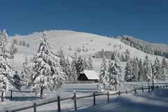 Winter auf der Teichalm (Naturpark Almenland) Tags: almenland naturpark steiermark oststeiermark urlaub alm teichalm sommeralm winter wintersport natur
