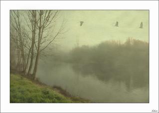 Al pasar por el río recordé