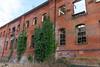 DSC_3214 (d0mokun) Tags: derby england unitedkingdom gb friar gate station goods warehouse urbex abandoned decay urban railway