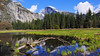 Half Dome (Behrad3d) Tags: nationalpark california yosemite joshua travel nature