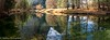 Merced River Reflections (OJeffrey Photography) Tags: mercedriver reflection reflections river yosemitevalley trees mountains panorama pano ojeffreyphotography ojeffrey jeffowens nikon d850