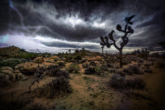 Raven Skies (East of 29) Tags: ravenskies desert joshuatree joshuatreenationalpark clouds lightning texture raven boyscouttrail sliderssunday