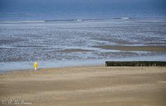Marée basse sur la côte Normande 07 (letexierpatrick) Tags: maréebase plage mer maritime marine marée sable normandie france europe extérieur explore eau nature nikond7000 nikon colors couleurs couleur