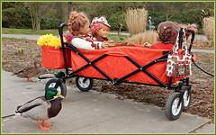 Die Freunde der Kindergartenkinder, sind immer dabei ... (Kindergartenkinder) Tags: kindergartenkinder annette himstedt dolls sanrike gruga grugapark essen garten gras milina annemoni tivi enten