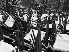 IMG_2653 (Juan Valentin, Images) Tags: jardinduluxembourg sénat palaisduluxembourg paris france winter invierno hiver snow neige nieve juanvalentin palais palacio park parque parc jardin garden whiteandblack blancoynegro biancoenero noiretblanc