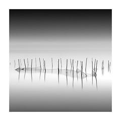 Gone Fishing (vulture labs) Tags: venice longexposure fineartphotography fineart blackandwhite bw fishing nets monochromatic monochrome monotone minimal minimalist minimalism beautiful