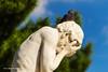 Oh no¡ (gnlinares25) Tags: canon canoneos100d tamron18270vcpzd garden louvre paris jardindestuileries animal