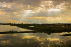 IMG_3424 (gungorme) Tags: landscape nature lake light reflection sky clouds cloud sun sunset obrukbarajı obruk iskilip çorum turkey türkiye tabiat doğa yansıma color colors bulutlar gökyüzü manzara göl