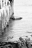 Desastre en la ría (pericoterrades) Tags: río puntaumbría huelva muelle barca