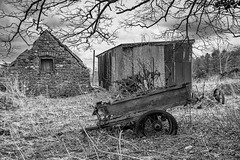 Left to rot (keithbellis) Tags: purple farmruin dilapidated trailer