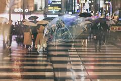 CHASING RAIN (ajpscs) Tags: ajpscs japan nippon 日本 japanese 東京 tokyo city people ニコン nikon d750 tokyostreetphotography streetphotography street seasonchange spring haru はる 春 2018 shitamachi night nightshot tokyonight nightphotography citylights omise 店 tokyoinsomnia nightview lights hikari 光 dayfadesandnightcomesalive alley othersideoftokyo strangers urbannight attheendoftheday urban walksoflife coldoutsidewarminside izakaya 居酒屋 taxiiswaiting taxi rain ame 雨 雨の日 whenitrains 傘 badweather whentheraincomes cityrain tokyorain wetnight rainynight rainingmen cantstoptherain pavement colorofrain chasingrain