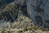 Vertige (Samuel Raison) Tags: vercors falaise vertige hauteur montagne nikon nikon1435mmafsg nikond3