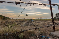 Barbed Wired (views@vista) Tags: clouds dusk evening farmers fields harvest landscape nature outdoor rural sky sugarcane sunset tractor