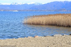 A day in the life (Giovanna-la cuoca eclettica) Tags: lago lagodigarda natura blu colors landscape