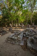 Ruins (Skulk Photography) Tags: coba mexico mayan ruins yucatan travel nature color abandoned jungle light quintanaroo stone history
