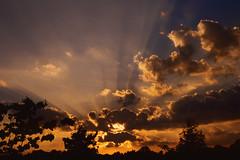 Sunset Clouds Light Streams (Modkuse) Tags: tokinaaf2870mmf2628 sunset clouds cloudscape trees nikon nikonslr nikonn90s fuji fujichrome fujivelvia fujichromevelvia fujifilmdigital