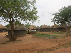 Olua refugee settlement (FAO Forestry) Tags: fao un uganda refugees unhcr world bank environment energy south sudan woodfuel forestry