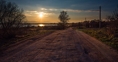 Country Road (free3yourmind) Tags: country road roads sun sunset braslav braslaw belarus trees nature lake