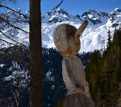 Bois curieux... Nosy wood... (CHAM BT) Tags: arbre meleze sculpture bois perchoir nez foret neige snow forest wood tree larch nose branch sourire smile
